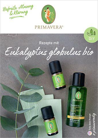 PRIMAVERA DIY Rezeptkarte Eukalyptus globulus bio